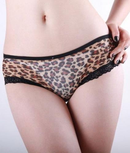 leopardovie-trusiki-foto